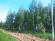 Продаётся участок 11 соток всего 28 км от МКАД по Горьковскому шоссе - Фото 5