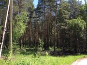 Лесной участок 10 соток д.Копнино ИЖС - Фото 4