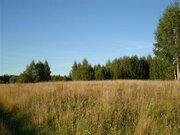 Земельный участок кфх - Фото 1