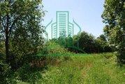 Участок в д. Ильицино Зарайского района 24 сот - Фото 2