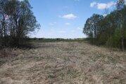 Предлагаю земельный участок 15 сот. в д. Становище - Фото 3