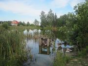 Участок 30 соток в деревне Цезарево. - Фото 3