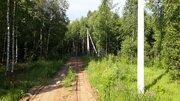 Участок СПК Клочково-1 - Фото 4