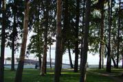 Продаю прилесной участок в кп на берегу Пестовского водохранилища - Фото 3