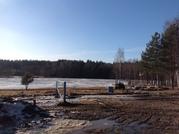 Продажа большого земельного участка в д. Кузьминки под скотоводство - Фото 2