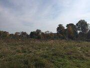 30 соток чистейшей экологии д. Капустино, Чехов - Фото 4