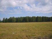 Земельный участок в п. Григорьевка Каслинского р-на Челябинской обл. - Фото 1