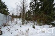 Лесной участок в отличном месте - Фото 2