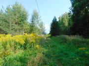 15 сот - ИЖС - д.Дубки - 65 км Щёлковское шоссе - Фото 1