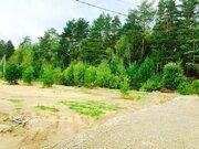 Земельный участок 10 соток Крайний к лесу ИЖС - Фото 3