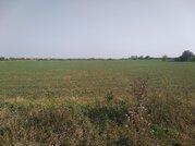 Продам земельный участок 11,5 га - Фото 5