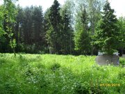 Прекрасный участок на окраине леса в д. Данилово - Фото 3