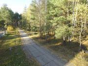 Лесной участок 20 соток д. Копнино ИЖС - Фото 1