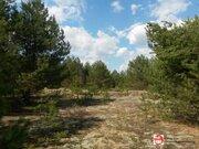 Земельный участок 60 сот на берегу реки Медведица д. Молоди - Фото 5