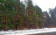 7 250 га, из них 2750 га леса (мин. 500 000 куб.м.) в собствен. - Фото 5