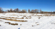 15 соток без строений в деревне Княжево Волоколамского района МО - Фото 5