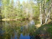 Прекрасная дача в лесу рядом с озером - Фото 5