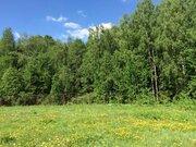 Земельный участок 13,15 сот. в кп Лисичкин лес - Фото 1
