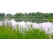 Участок на берегу реки 66 соток по Минскому шоссе. 75 км от МКАД - Фото 2