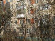 Отличная однокомнатная квартира в Серпуховском районе п. Большевик - Фото 1