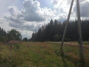 Бакеево, 6 сот, возле леса, по очень низкой цене! - Фото 2