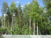 Лесной участок 13 соток в пос. Самар-1, Раменский район 40 км от МКАД - Фото 5