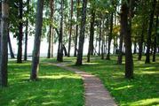 Продаю прилесной участок в кп на берегу Пестовского водохранилища - Фото 2