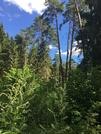 Земельный участок первая линия - Фото 1