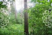 Егорьевское ш, 24 км от МКАД. Кратово - Фото 2