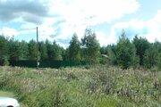 Участок в Киржачском районе с собственным лесом с выходом в лес. - Фото 5