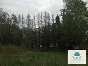 Продается земельный участок 41 сотка, с. Ильинское - Фото 3