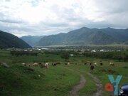 Участок в Чемальском районе - Фото 1
