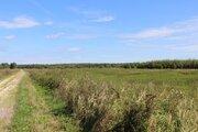 3,7 Га под сельхоз.производство - 95 км Щёлковское шоссе - Фото 1