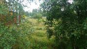 Продам земельный участок в посёлке Решетниково Клинский район - Фото 1