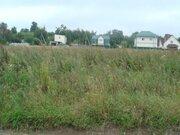Земельный участок ИЖС 30 соток д.Кривцы Новорязанское ш 35 км от МКАД - Фото 4