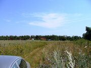 Участок 200 соток правильной формы (90х220м) д. Сетовка Воскресенског - Фото 2