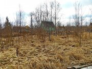 Участок 6 соток в СНТ Клён, Пупышево - Фото 3