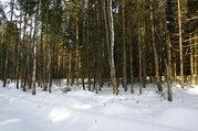 Лесной участок 10 соток в Жаворонках - Фото 3