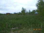 Купить земельный участок в деревне Троица Новгородского района. - Фото 4