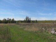 7 Га с/х-назначения в дер.Илькино - 90 км от МКАД по Щелковскому шоссе - Фото 4