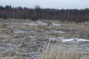 Земельный участок 20 соток в д.Волкуша - Фото 5