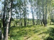 Земельный участок в коттеджном поселке «Ново-Заречное». Торг. - Фото 4
