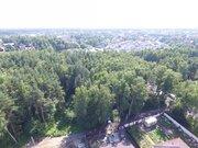Лесной участок 15 соток д. Осеченки ИЖС - Фото 2