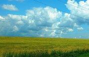 Продам массив земель с/х назначения в Смоленской области - Фото 1