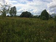 10 соток в д. Кузьмино-Фильчаково Чеховского района - Фото 3