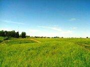 Продам участок 7,87 соток в Рузском районе вблизи деревни Федчино. - Фото 4