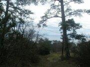 Земельный участок в г. Ялта, пгт. Массандра, пгт. Восход, 0,1000 га, - Фото 1