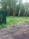 Каширское шоссе, д. Пуговичино, СНТ Колхозник, участок 800 кв.м. - Фото 3