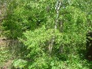 Земельный участок в Клинском районе - Фото 4