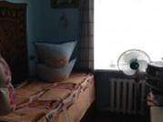 Продам 2-комн в п. Тимирязевский - Фото 4